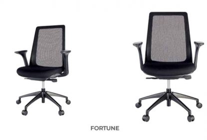 chair studio manager-chair-fortune